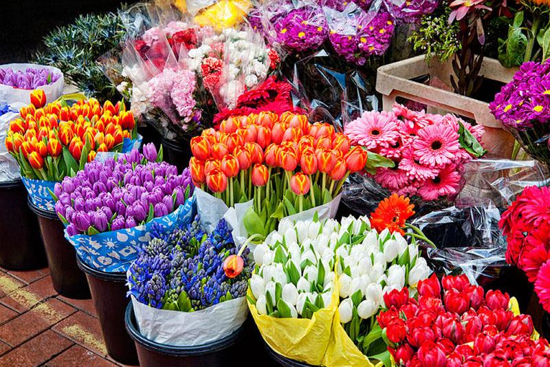 گل های موجود در بازار ایران