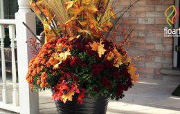 چند نکته اساسی در مورد گلدان تزیینی پاییزی