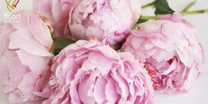 14 گل زیبا برای مجلس عروسی که باید از آن ها استفاده کرد