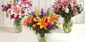 معرفی گل مناسب برای عیادت مریض