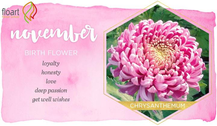 گل ماه آبان