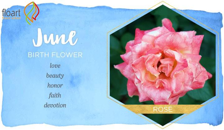 گل ماه خرداد
