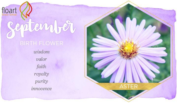 گل ماه شهریور