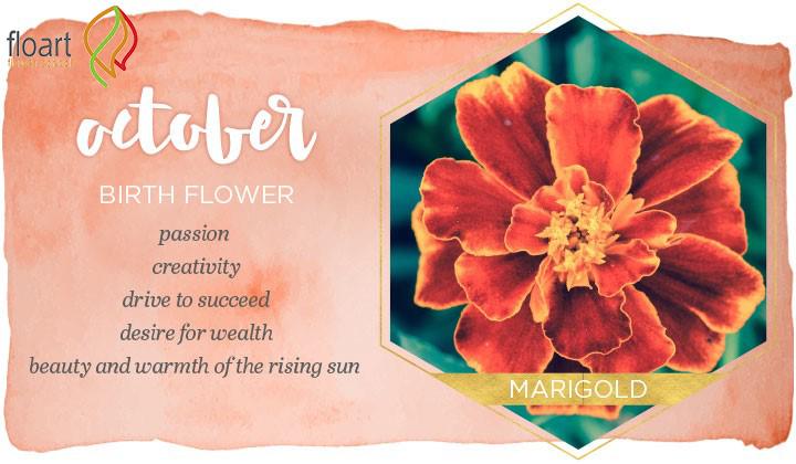 گل ماه مهر